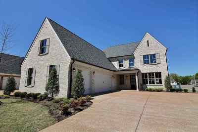 Collierville Single Family Home For Sale: 448 Ethan
