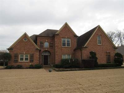 Memphis Single Family Home For Sale: 8825 River Meadow