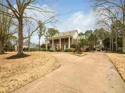 Germantown Single Family Home Contingent: 9555 S Spring Hollow