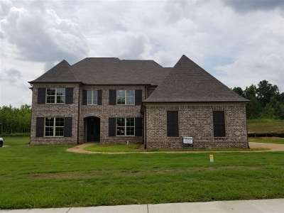 Lakeland Single Family Home For Sale: 10545 Mount McKenzie