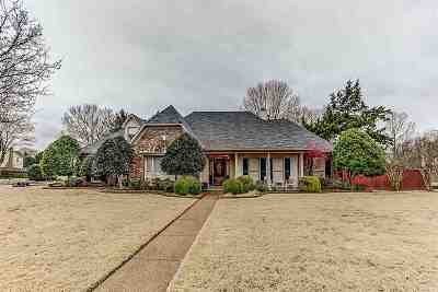 Collierville Single Family Home For Sale: 741 Lake Meadow