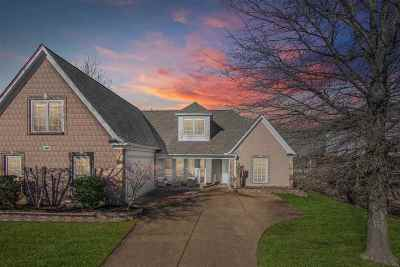 Collierville Single Family Home For Sale: 200 N Rain Lake