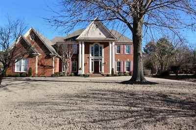 Collierville Single Family Home Contingent: 686 Port Natchez