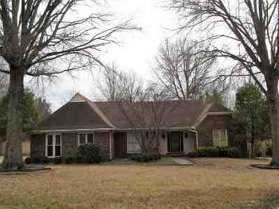 Collierville Single Family Home For Sale: 751 Concordia