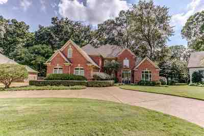 Collierville Single Family Home For Sale: 10329 Stoney Brooke