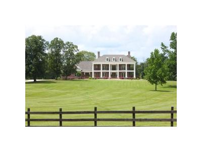Stantonville TN Single Family Home For Sale: $1,895,000
