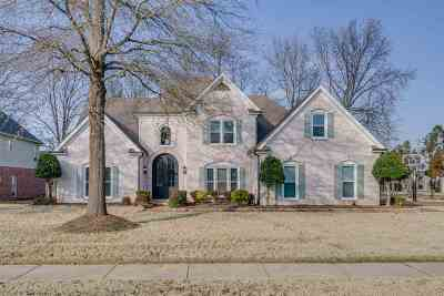 Collierville Single Family Home Contingent: 9872 N Houston Oak