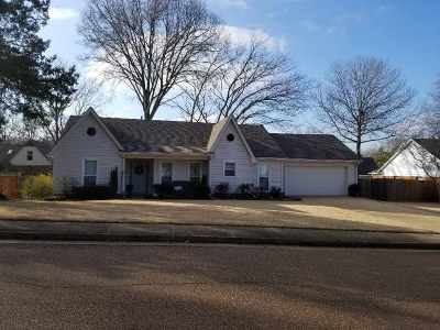 Collierville Single Family Home For Sale: 369 Wolf Trap