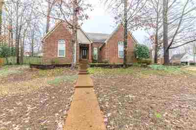 Memphis Single Family Home For Sale: 394 Locust Grove