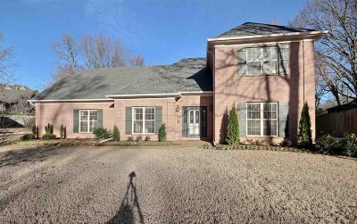 Collierville Single Family Home For Sale: 3332 Shady Forest