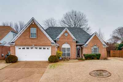 Bartlett Single Family Home For Sale: 4090 Fairway View