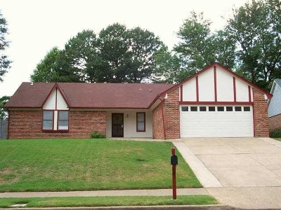 Shelby County Single Family Home For Sale: 3359 Cricket Glen