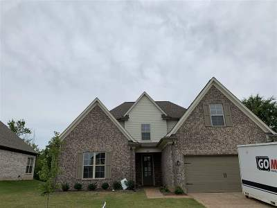 Bartlett Single Family Home Contingent: 8451 Butterfly View