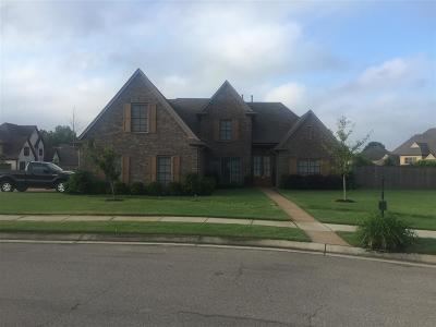 Collierville Single Family Home Contingent: 811 Six Oaks