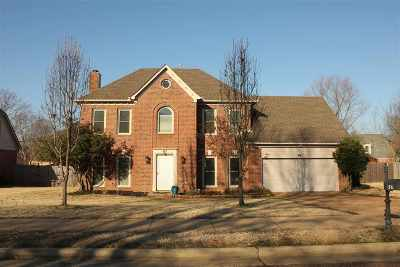 Collierville Single Family Home Contingent: 767 Silverman