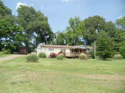 Ripley Single Family Home For Sale: 11951 19