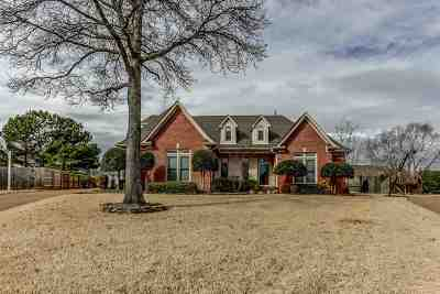 Collierville Single Family Home Contingent: 1599 Grafton