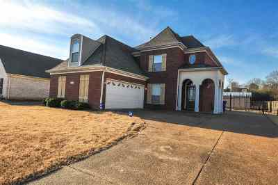 Olive Branch Single Family Home For Sale: 8143 Woodson