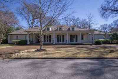 Memphis Single Family Home For Sale: 248 E Chickasaw