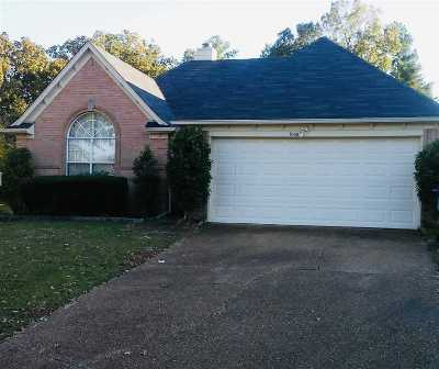 Lakeland Single Family Home For Sale: 10061 Woodland Birch