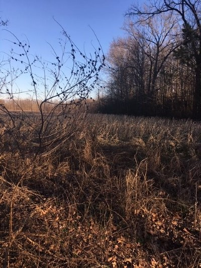 Millington Residential Lots & Land For Sale: 7726 Ward