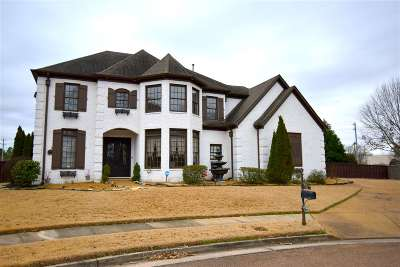 Collierville Single Family Home For Sale: 128 Ivy Brook