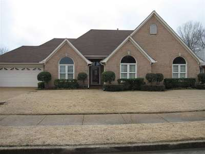 Collierville Single Family Home Contingent: 287 Wildfox