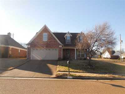 Single Family Home For Sale: 3849 Walden Meadow