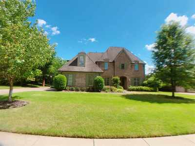 Collierville Condo/Townhouse For Sale: 1253 Brayridge