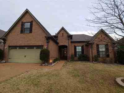 Olive Branch Single Family Home Contingent: 4226 Ritchie