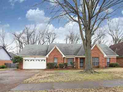 Bartlett Single Family Home For Sale: 3610 Gailyn