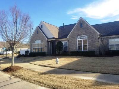 Collierville Single Family Home Contingent: 193 Seattle Slew #41