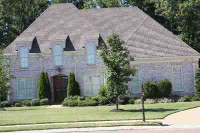 Collierville Rental For Rent: 939 Tall Spruce