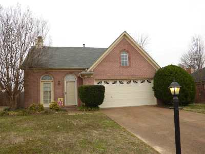 Memphis TN Single Family Home For Sale: $142,000