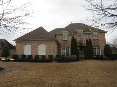 Collierville Single Family Home Contingent: 4481 Whisper Run