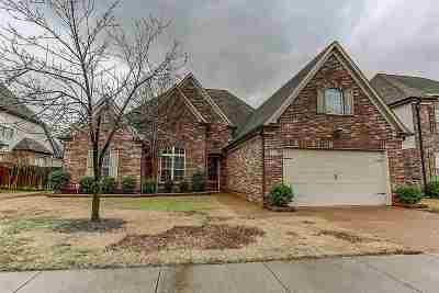 Collierville Single Family Home For Sale: 1341 Raindrop