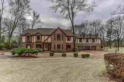 Germantown Single Family Home For Sale: 9125 Forest Downs