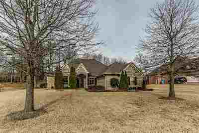Atoka Single Family Home For Sale: 226 Colton Ridge