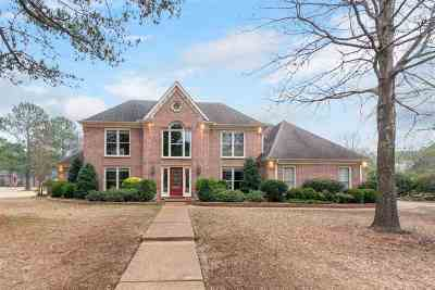 Collierville Single Family Home For Sale: 2668 S Mansfield Manor