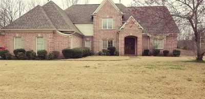 Collierville Single Family Home For Sale: 561 Estanaula