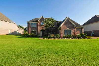 Arlington Single Family Home Contingent: 12131 Chapel Meadow