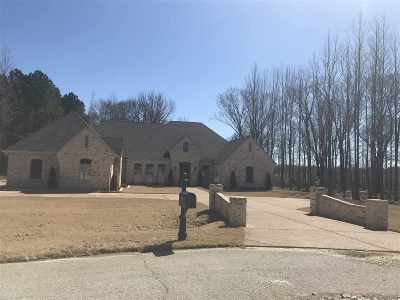Collierville Condo/Townhouse For Sale: 9965 Garden Trail