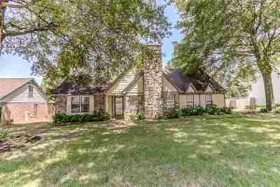 Collierville Single Family Home For Sale: 364 Taraview