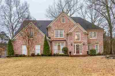 Memphis Single Family Home Contingent: 438 Brook Ridge
