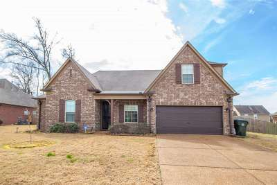 Bartlett Single Family Home For Sale: 6157 Piney Bluff