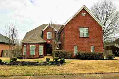 Collierville Single Family Home For Sale: 576 Johnash