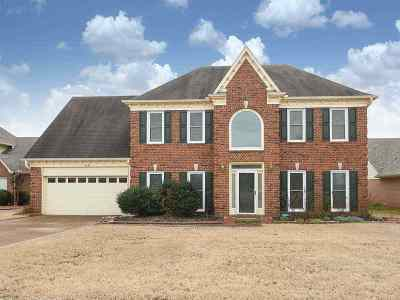 Memphis Single Family Home For Sale: 8945 Lindstrom