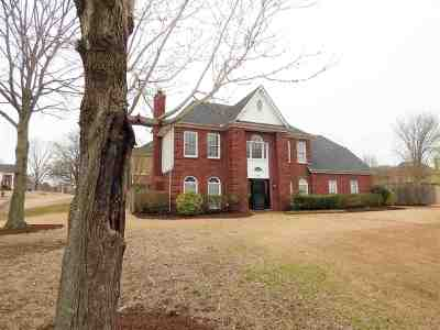 Collierville Single Family Home For Sale: 390 Castle Creek