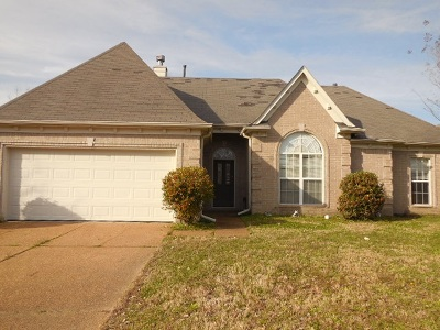 Bartlett Single Family Home For Sale: 8232 White Wing