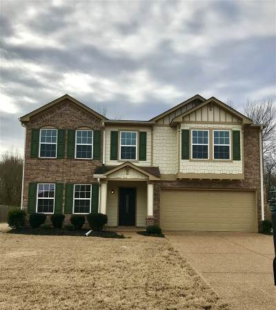 Olive Branch Single Family Home For Sale: 6291 Vera